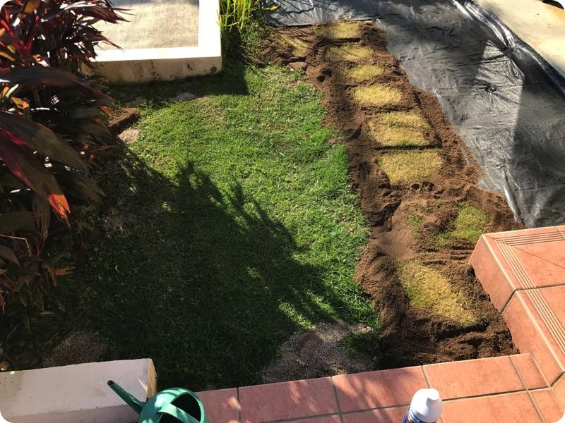 芝生を広げることにしました